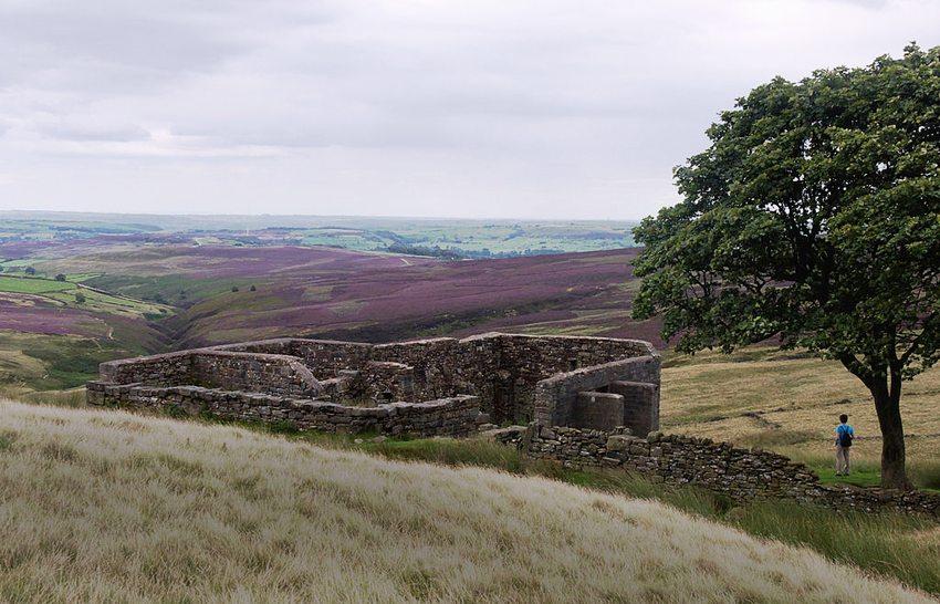 Top Withins bei Haworth (Bild: John Robinson, Wikimedia, CC)