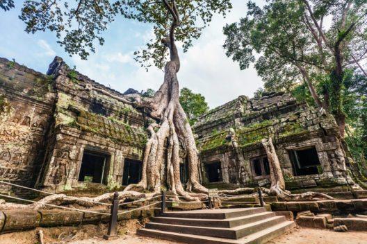Der Park Angkor Wat ist das Wahrzeichen Kambodschas. (Bild: © Kushch Dmitry - shutterstock.com)