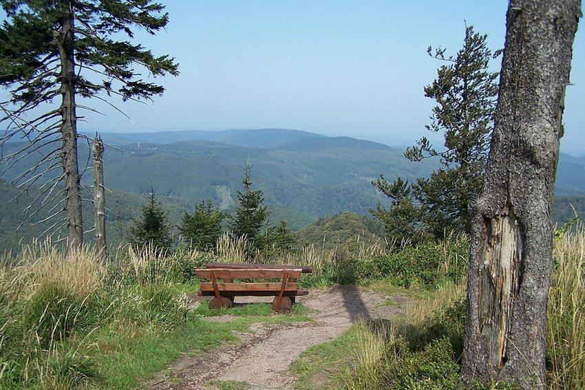 Aussichtspunkt am Westrand des Großen Inselsberges (Bild: Metilsteiner, Wikimedia, CC)