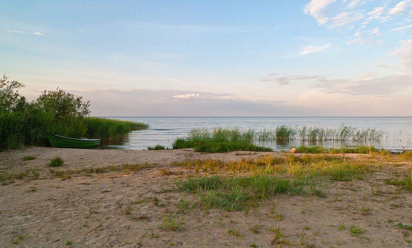 Peipussee bei Tiheda mit Blick nach Osten (Bild: Medvedev, Wikimedia, CC)