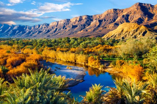 Die Natur des Landes geniessen (Bild: © cdrin - shutterstock.com)