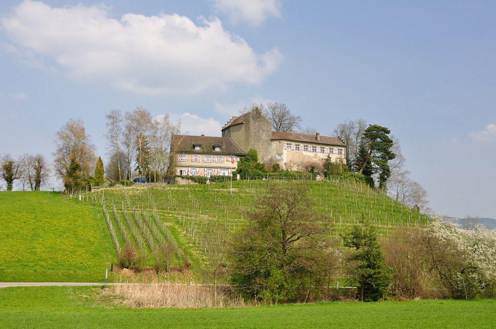 Schloss Schwandegg nordwestlich des Dorfes Waltalingen (Bild: Hansueli Krapf, Wikimedia, CC)