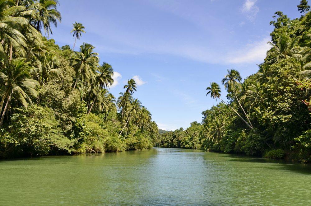 Cebu ist auch für Naturliebhaber ein echtes Paradies. (Bild: © Neung Duang - shutterstock.com)