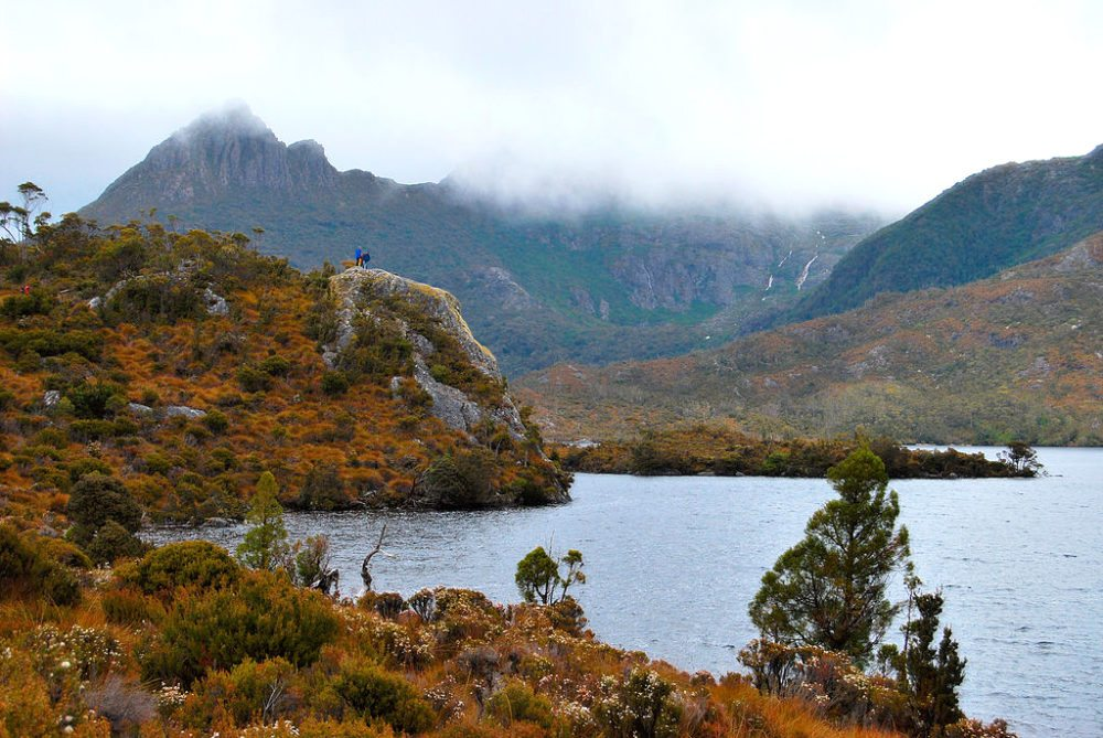 "Unterwegs im ""Cradle-Mountain-Lake-St.-Clair-Nationalpark"". (Bild: Peripitus, Wikimedia, GNU)"