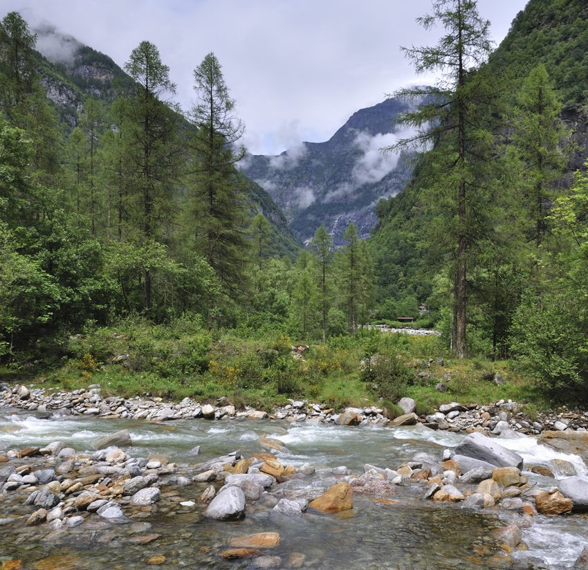 Mündungsgebiet der Flüsse Verzasca und Ticino im Tessin (Bild: Hansueli Krapf, Wikimedia, CC)