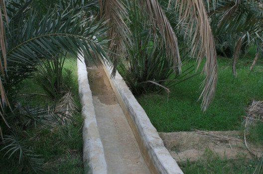 Die Afladsch – so werden die traditionellen Bewässerungskanäle genannt. (Bild: Bob McCaffrey, Wikimedia, CC)
