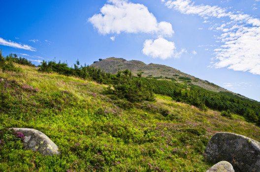 Der Berg Snezka (Bild: © CCat82 - shutterstock.com)