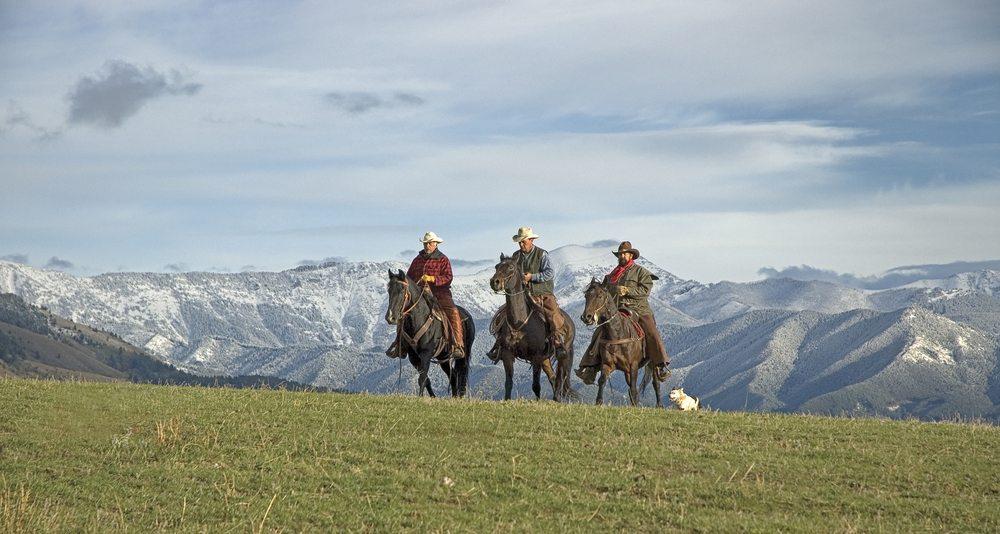 Der östliche Teil von Montana wird von der Prärie eingenommen. (Bild: © outdoorsman - shutterstock.com)