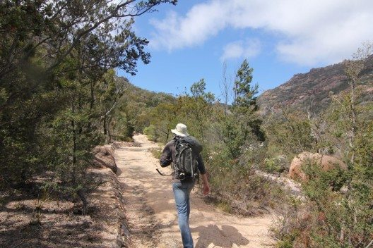 Wandern in Australien (Bild: © cherry-hai - shutterstock.com)