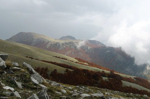 Pollino Nationalpark (Bild: Potito m. petrone, Wikimedia, GNU)