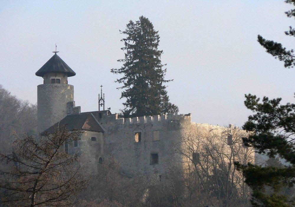 Die Burg Birseck (Bild: © Joerg Kummer - CC BY-SA 2.5)