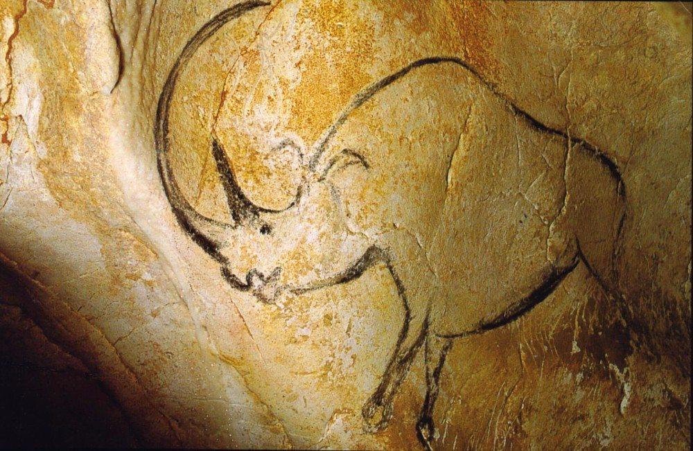 Nashorn mit überlangem Horn (Bild: © wiki.org)