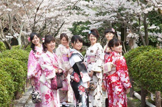 Das Kirschblüten-Fest ist Teil der Identität des Landes der aufgehenden Sonne. (Bild: littlesam / Shutterstock.com)