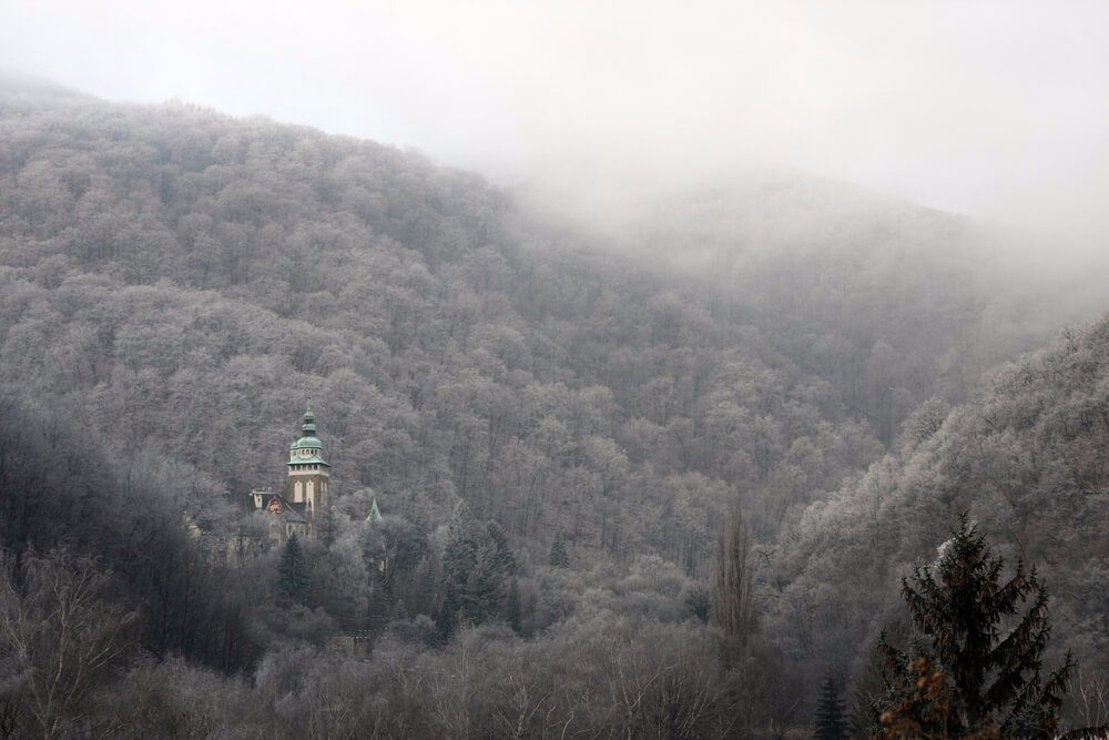 Auch die Waldflächen des Nationalparks sind im ungarischen Vergleich einmalig. (Bild: © CoolR - shutterstock.com)