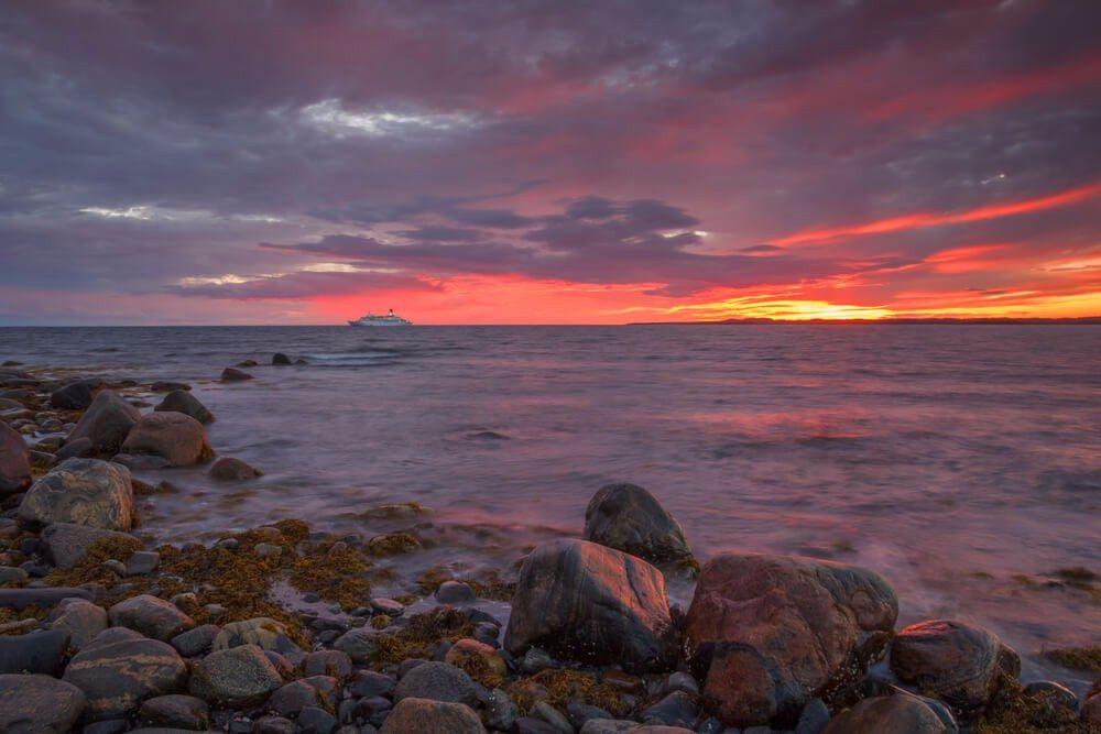 Trotz der nördlichen Lage verfügt das Weisse Meer über eine erstaunlich vielfältige Tierwelt. (Bild: © Gorshkov Igor - shutterstock.com)