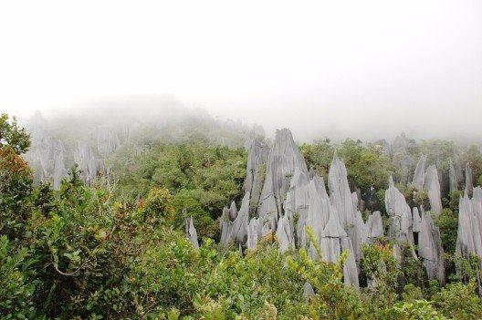 Gunung Mulu (Bild: © Rafal Gaweda - shutterstock.com)