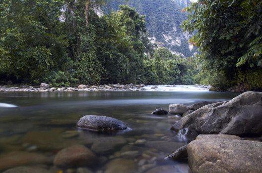 Fluss im Gunung Mulu-Nationalpark (Bild: Kim Briers / Shutterstock.com)
