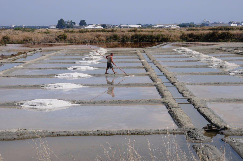 Die Salzgärten sind eine der sehenswertesten Attraktionen in Guérande. (Bild: © Pack-Shot - shutterstock.com)