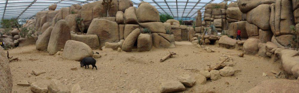 Die Desert-Wüstenanlage, die einer Felsenwüste von Nordamerika nachempfunden ist. (Bild: © Raedts - CC BY-SA 3.0)