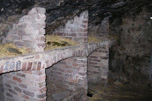 Ghost Hunter Tour in Edinburgh (Bild: Shadowgate, Wikimedia, CC)