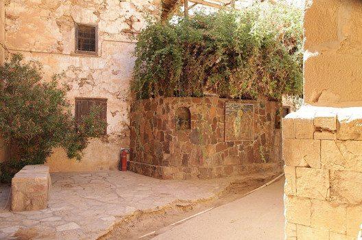 Ginsterstrauch an der Hinterseite der Kapelle (Bild: Grand Parc, Wikimedia, CC)