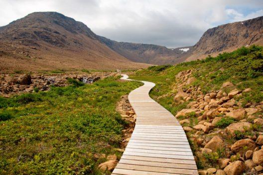 Tablelands, Neufundland (Bild: © RuthChoi - shutterstock.com)