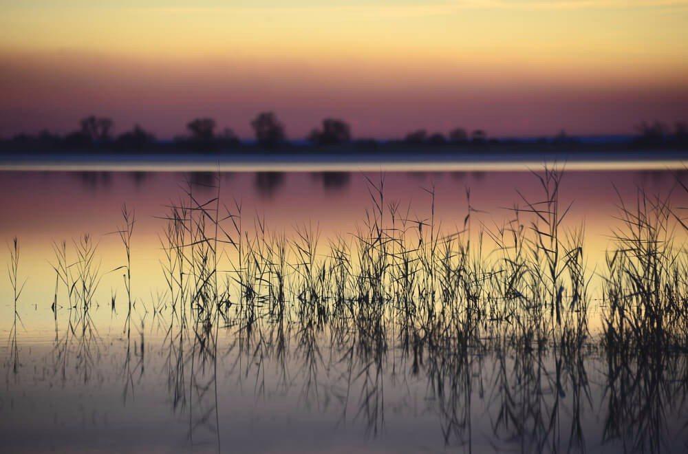 """Der Neusiedler See in Österreich wird oftmals auch als """"Meer der Wiener"""" bezeichnet. (Bild: © Albert Russ - shutterstock.com)"""