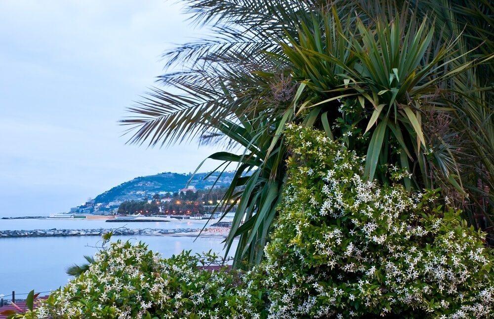 In Italien gilt San Remo als Blumenstadt. (Bild: © efesenko - fotolia.com)
