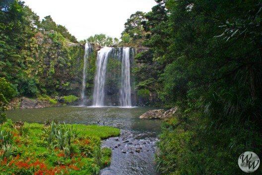Die Whangarei Falls