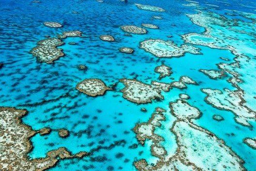 Das Great Barrier Reef ist das grösste Korallenriff der Erde. (Bild: © Edward Haylan - shutterstock.com)