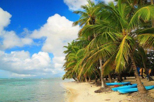 In Guadalupe kannst du gemütlich unter den Palmen am Meer relaxen und deine Zeit entspannt geniessen. (Bild: © Inga Locmele - shutterstock.com)