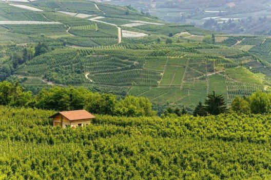 Das Val di Non (Bild: © Claudio Giovanni Colombo - shutterstock.com)