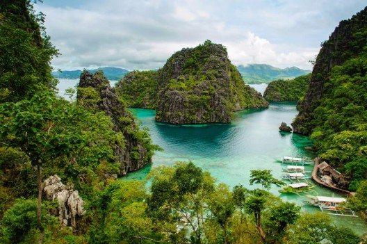 Palawan verfügt über eine einzigartige Flora und Fauna. (Bild: © Richie Chan - shutterstock.com)