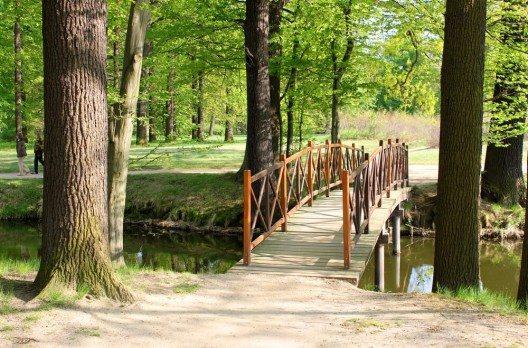 Das Gesamtgelände des Parks umfasste ursprünglich eine Gesamtfläche von 622 Hektar. (Bild: © Henry Nowick - shutterstock.com)