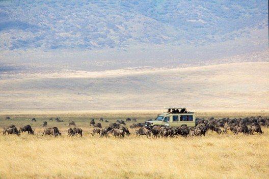 Safari in Kenia (Bild: © Kjetil Kolbjornsrud - shutterstock.com)