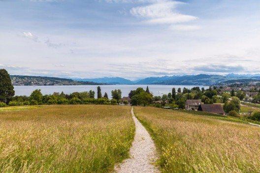 Einen ausgezeichneten Blick über den Zürichsee und die Alpen. (Bild: © Vogel - shutterstock.com)