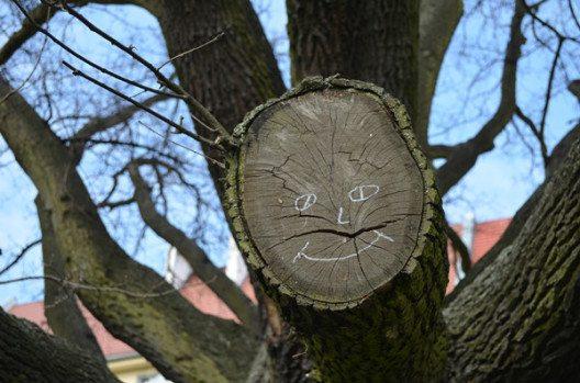 Stettin: Eine Stadt für glückliche Gesichter. (Bild: © Julia Schattauer / bezirzt.de)