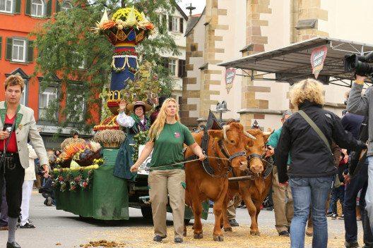 Cannstatter Volksfest – Volksfestumzug. (Bild: © in.Stuttgart / Thomas_Niedermueller)