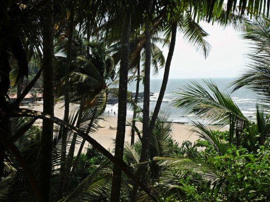 Das Geräusch von Palmen im Wind ist wohl eine sder schönsten Geräusche. (Bild: © Julia Schattauer / bezirzt.de)