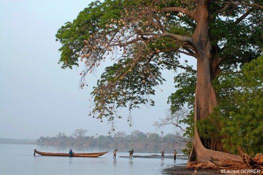 Abwechslung und viel Raum für Abenteurer und Aktive schaffen das Buschland, die Wüste und die sumpfreichen Mangrovengebiete.