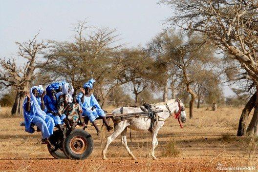 Senegal im FTI Afrika Programm
