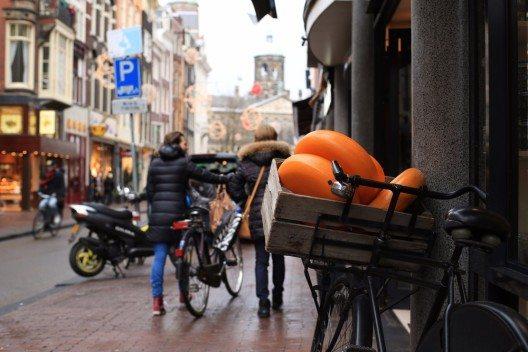 Wenn man eines essen muss, dann Käse. (Bild: © Zarya Maxim Alexandrovich - shutterstock.com)