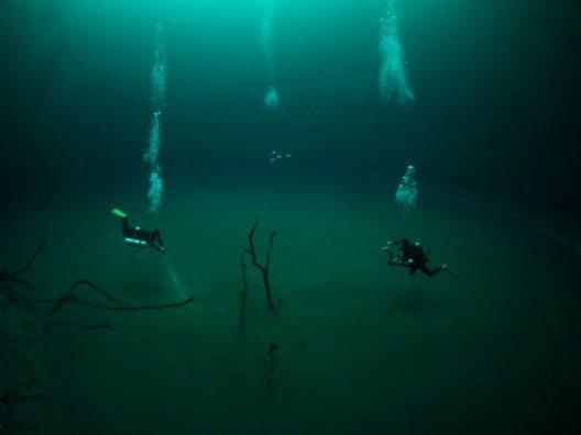Tauchen in der Cenote Angelita (Bild: © Yucatán Dive Trek/Christoph Hoppe)