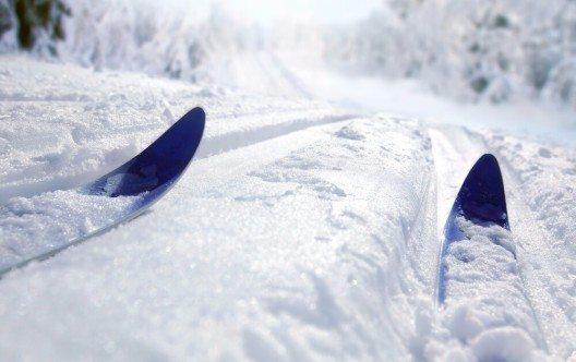 Neu in diesem Winter werden zwei Langlaufloipen (Bild: © Mikael Damkier - shutterstock.com)
