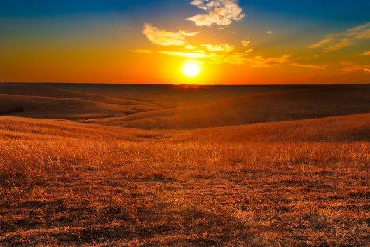 Einsame, sanft gewellte und vor allem gigantische Felder. Das ist die Landschaft des Mittleren Westens.