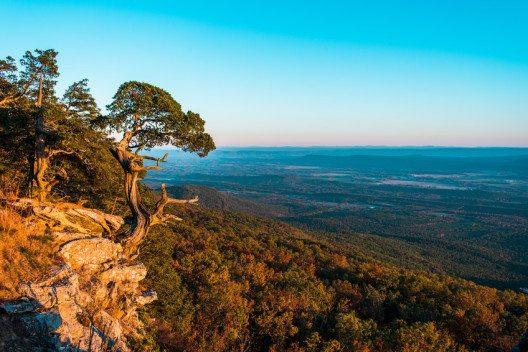 Mit ihren dicht bewaldeten Bergen ähneln die Ozark Mountains den Mittelgebirgen Europas.