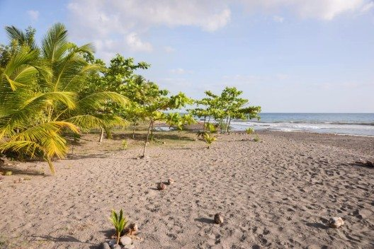 Dominica (Bild: © kelifamily - shutterstock.com)