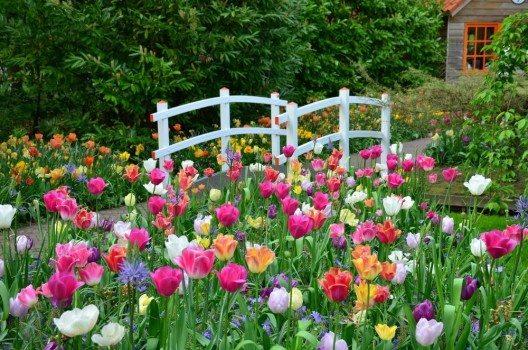 Eine Blumenpracht ganz besonderer Art zeigt der Keukenhof bei Lisse. (Bild: © rob3rt82 - fotolia.com)
