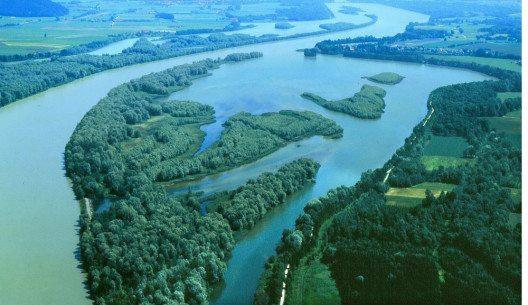 Das von Flussarmen durchzogene Vogelschutzgebiet ist eine Insel der naturnahen Entspannung. (Bild: © Kur- & GästeService Bad Füssing)