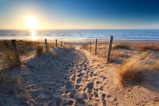 (Bild: © Olha Rohulya – Shutterstock.com)